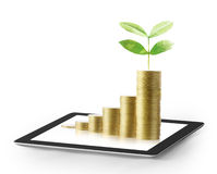 Tablet  with business graph and golden coin Royalty Free Stock Image