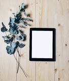 Tablet with a clean blank screen monitor with a branch of eucalyptus on a wooden background with natural wood planks top view vert. Ical, digital computer with stock photography