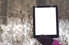 Tablet computer with blank screen. Tablet computer with blank screen in female hands on protective grid fence background of restricted area royalty free stock image