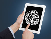 Tablet Computer with brain. Hand holding and Touch on Tablet Computer with brain Royalty Free Stock Photography
