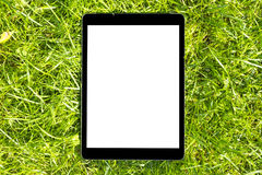 Tablet Computer on the Green Grass at the sun, isolated white screen, empty space for text, copy space, close up. Stock Photo