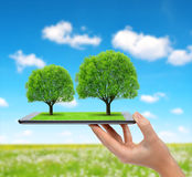 Tablet computer with trees Stock Images