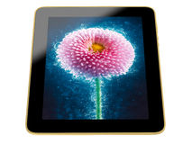 Tablet - flower image Royalty Free Stock Images