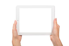 Tablet and Hands on White Background Stock Image