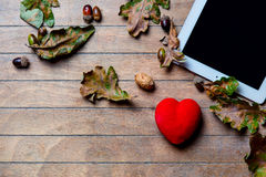 Tablet, heart -shaped toy and fallen leaves Stock Images