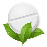 Tablet and leaves Royalty Free Stock Images