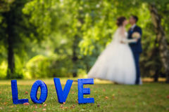 Tablet love and kissing groom and bride Royalty Free Stock Photo