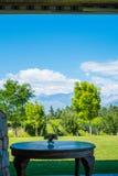 Tablet met bloemendecoratie en wijngaard met de Andes op de bedelaars Stock Foto's