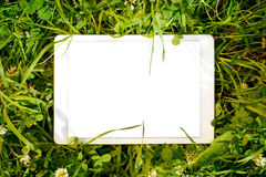 Tablet PC in green herbs Stock Image