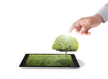 Tablet on the white grass field and tree Royalty Free Stock Photography