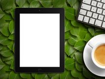 Tablet white screen similar to ipad display and coffee. On background. 3d rendering stock image