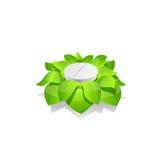 Tableta con las hojas Fotografía de archivo