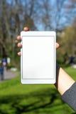 tableta en blanco blanca sostenida por la mujer Imagen de archivo