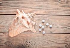 Tabletas del calcio y de la cáscara en una tabla de madera Concepto MÉDICO Minerales para la salud Visión superior Fotografía de archivo libre de regalías