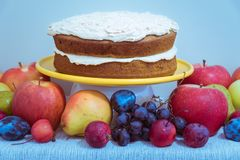 Tabletop arrangement of rustic vegan layer cake with autumn fruit royalty free stock photography
