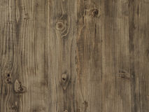 Tabletop brown softwood branches Royalty Free Stock Images