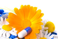 Tablets and flowers Royalty Free Stock Photography