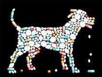 Tablets Pills Dog Royalty Free Stock Photo