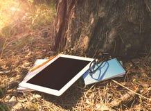 Tablette au parc dans la lumière de coucher du soleil d'été sous l'arbre Images libres de droits