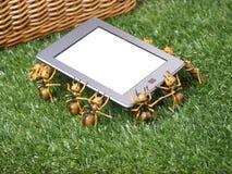 tablette d'E-lecteur prise par Picnic Ants Image libre de droits