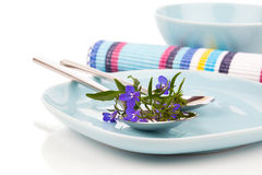 Tableware with blue lobelia flowers and cutlery Stock Photos