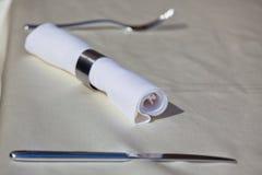 Tableware: Steel Utensil and Napkin Ring Stock Image