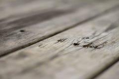 Tablones de la madera Imagen de archivo libre de regalías