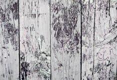 Tablones de madera de la textura Fotografía de archivo libre de regalías