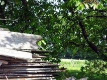 Tablones de madera en yarda de madera de construcción Fotos de archivo libres de regalías