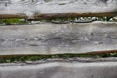 Tablones de madera grandes, oscuros, viejos con la hierba verde Menú para el restaurante orgánico Fondo para los prospectos, cart Fotos de archivo