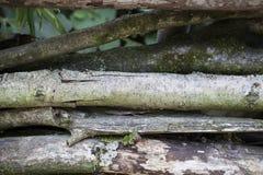Tablones de madera grandes, oscuros, viejos con la hierba verde Menú para el restaurante orgánico Fondo para los prospectos, cart Imágenes de archivo libres de regalías