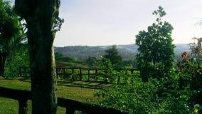 Tabor kullar Talamban Cebu vid dess banor Arkivbild
