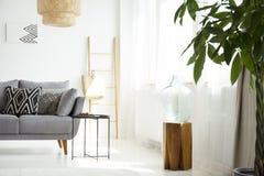 Tabouret en bois dans l'intérieur blanc de salon avec le cushio modelé images libres de droits