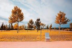 tabueira公园  免版税库存照片
