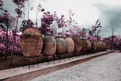 tabueira公园  免版税图库摄影
