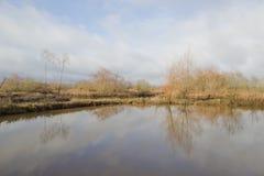 tabueira,阿威罗葡萄牙公园  免版税库存图片
