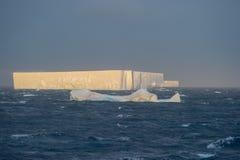 Tabular tempanos in the Antarctic peninsula. Tabular tempans adrift in the Weddell Sea, Antarctic Peninsula Royalty Free Stock Photos