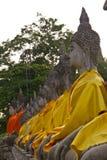 Tabulate of buddha statues. At Ayuttaya Stock Photography