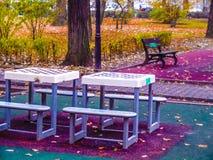 Tabuleiro de xadrez coloridos, fundo Fotografia de Stock