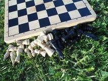Tabuleiro de xadrez na grama Foto de Stock Royalty Free