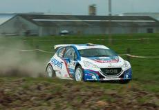 TAC Rally Belgique 2015 Image libre de droits