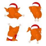 Tacchino di Natale in cappuccio di Santa Fotografie Stock