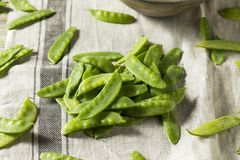 Taccole organiche verdi crude Immagine Stock Libera da Diritti