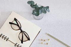 Taccuino aperto con gli occhiali, la penna, i perni dorati e la pianta verde immagini stock