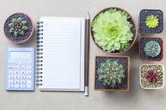 Taccuino con il calcolatore della matita ed il cactus del topview sulla parte posteriore di marrone Immagini Stock Libere da Diritti
