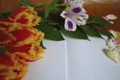 Taccuino con le iridi ed i tulipani Fotografia Stock