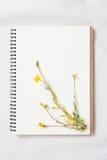Taccuino e fiore in bianco Immagine Stock Libera da Diritti