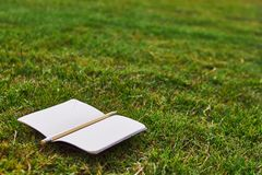 Taccuino e matita sull'erba fotografia stock