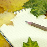 Taccuino e matita sulle foglie di acero Fotografie Stock Libere da Diritti