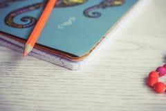 Taccuino e penna blu immagini stock